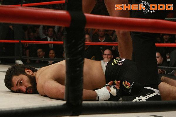 arlovski-knocked-out