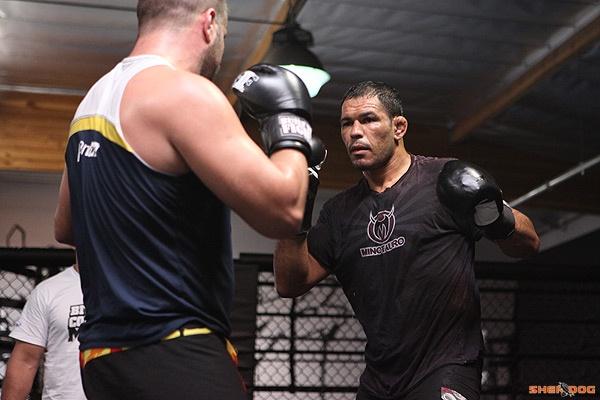 Nogueira- boxing