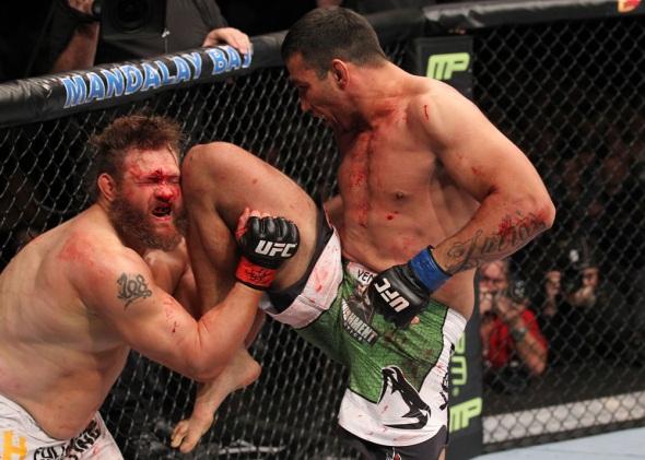 UFC 143 Photo Werdum knees Nelson