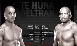 UFC on FUEL TV 4 Prelims