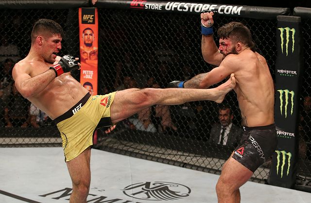 UFC Fight Night: Luque v Perry